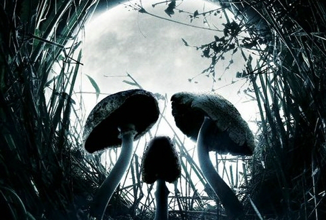 Whatever you think of the film, Shrooms has a great poster...
