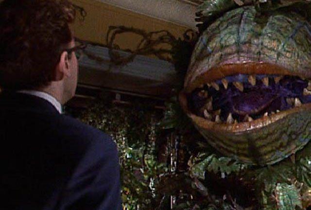 Excuse me, Seymour, but I'm feeling a bit peckish...