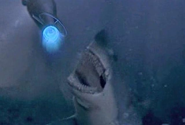 A pretty toothless CGI shark from Escape From L.A. (1996)