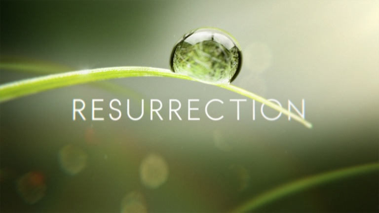 Resurrection Review