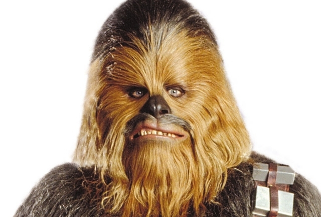 Get yourself a Chewy outfit...