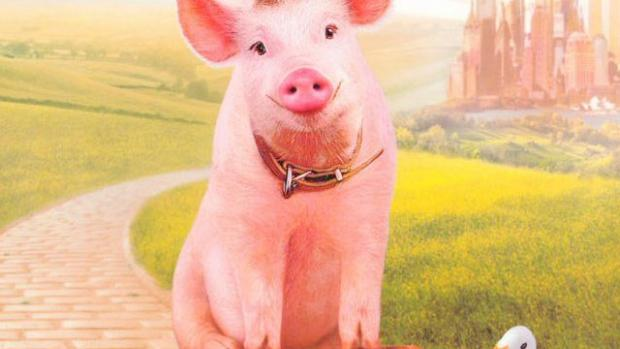 Babe, of Pig in the City Fame