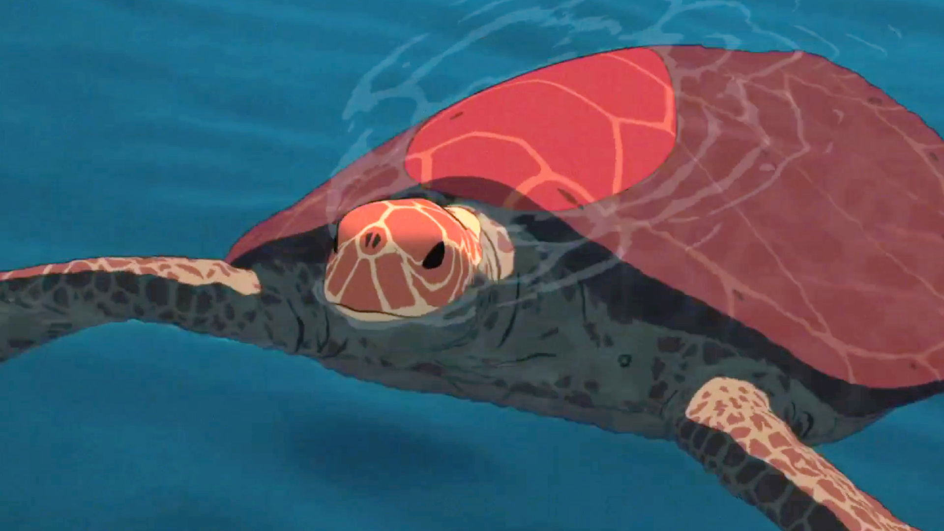 The Red Turtle Review Den Of Geek