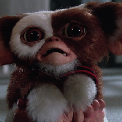20 Facts About Gremlins