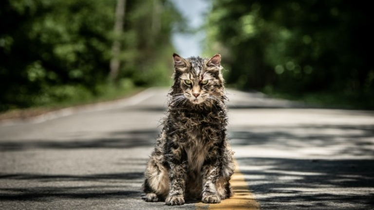 Pet Sematary Review It S All About The Cat Den Of Geek
