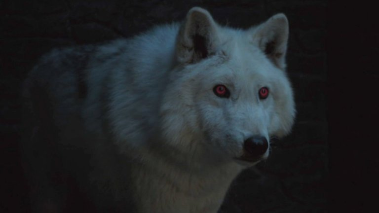 Game of Thrones: Ghost Direwolf