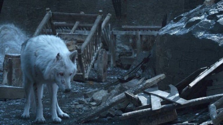 Ghost is abandoned by Jon Snow