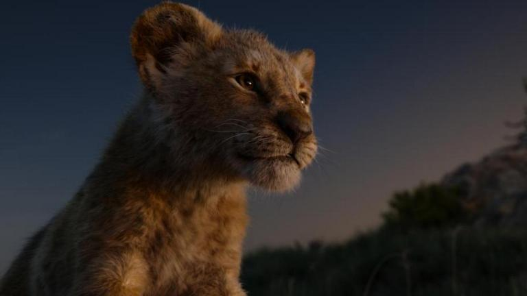 Simba in The Lion King