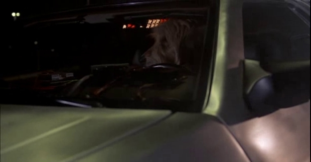Back to the Future - The Shaggy Dog