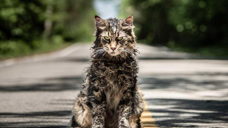 Amazon Prime New Releases March 2020 Pet Sematary