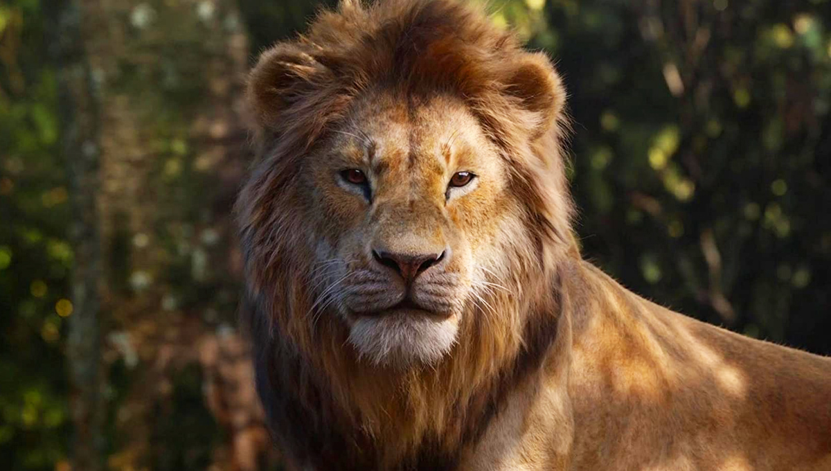 Sepertinya The Lion King 2 versi live akan hadirkan banyak kejutan