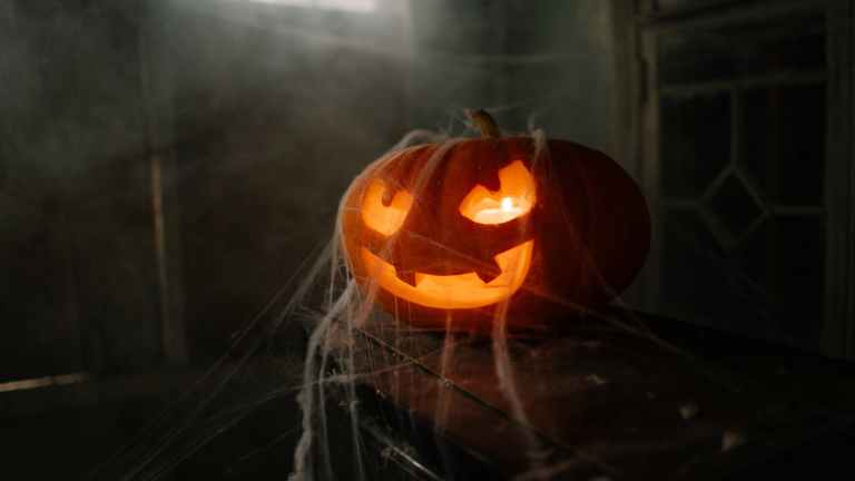 jack o lantern covered in spider web