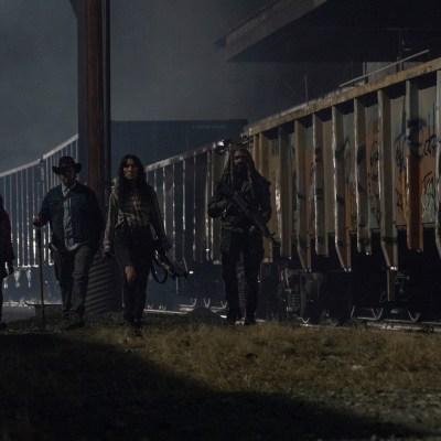 The Walking Dead Season 10 Extra Episodes