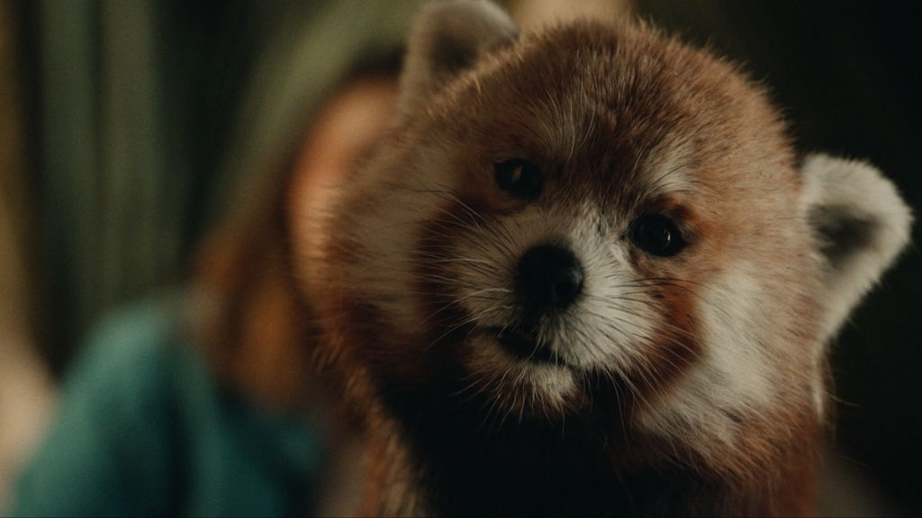 His Dark Materials Framestore Pan Red Panda Form