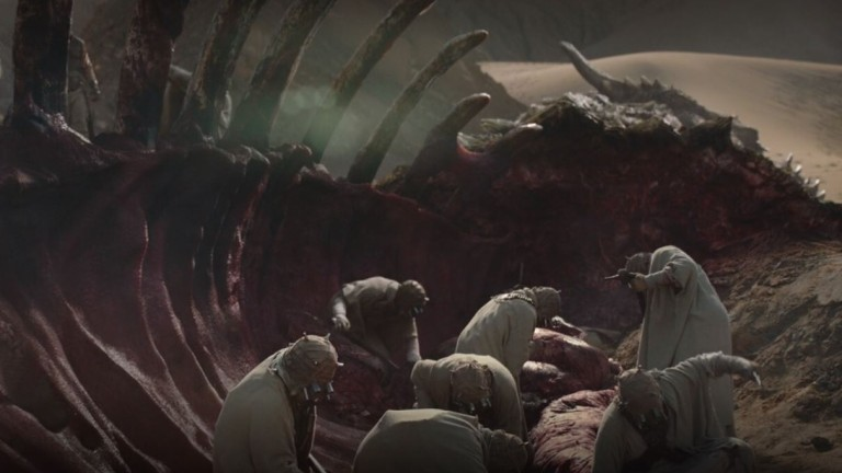 The Mandalorian Krayt Dragon Meat