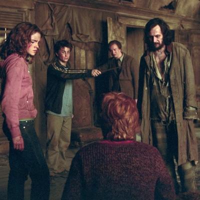 Harry Potter TV Show Marauders