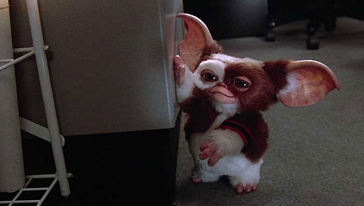 Gremlins 9 Iconic & Terrifying 80s Horror Movies You Need To Rewatch
