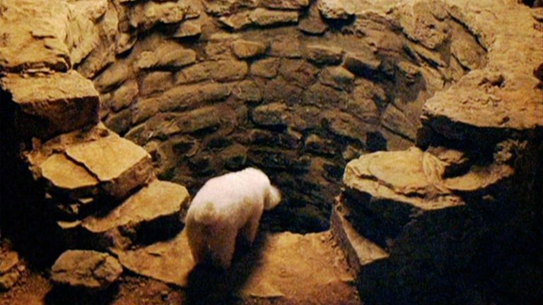 The Silence Of The Lambs pit