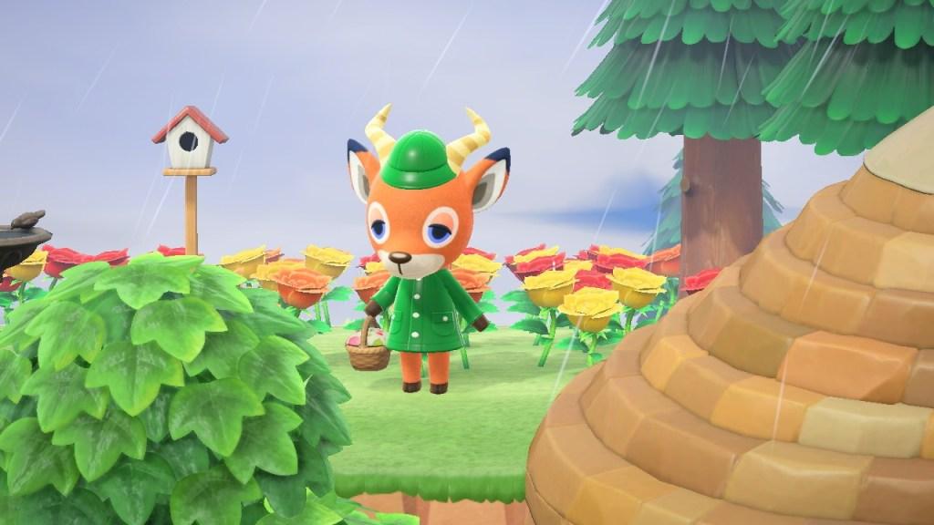 Animal Crossing Beau
