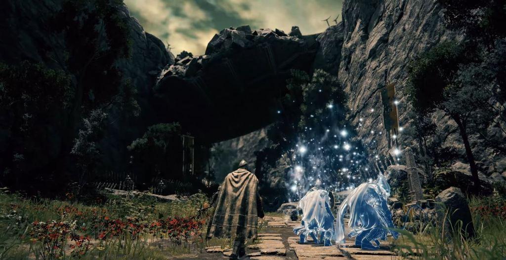 Elden Ring co-op phantoms