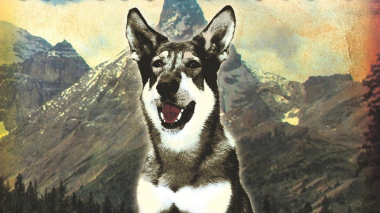 The Littlest Hobo series 1 dvd cover cropped